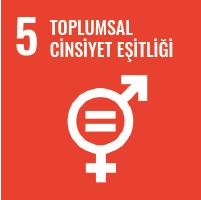 Turuncu zeminde, 5, Toplumsal Cinsiyet Eşitliği, yazıyor. Altında biyolojik cinsiyet sembolü olan bir yuvarlak, altında artı işaret, sağ üstünde bir ok işareti. Yuvarlağın içinde, birbirine paralel iki çizgiden oluşan, eşittir, işareti.